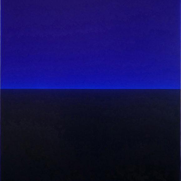 Exposition Galerie Baudoin Lebon