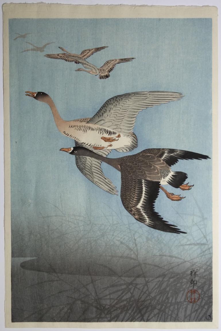 Présentation estampes japonaises, Galerie Christian Collin